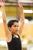 Biron Gymnastics 2013 State Meet