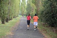 - Milano, il parco di Trenno, nel quartiere di S.Siro.......- Milan, Park Trenno, in the district of San Siro