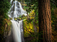 Falls Creek Falls, Washington.