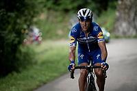 Philippe Gilbert (BEL/Deceuninck-Quickstep)<br /> <br /> Stage 7: Saint-Genix-les-Villages to Pipay  (133km)<br /> 71st Critérium du Dauphiné 2019 (2.UWT)<br /> <br /> ©kramon