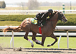 07 April 2011.  Hip #138 Broken Vow - Fashion Girl colt consigned by Eddie Woods worked 1/8 in 09.4.