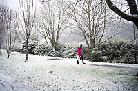 UK Weather: Heavy flurries of snow fall in Aberystwyth, west Wales,  on a cold February morning in Aberystwyth, west Wales, UK. Tuesday 06 February 2018. <br /> The Met Office has issued a 'yellow' warning for snow and ice, as a band of sleet and snow moves in from the west, to cover much of Wales and the north of England
