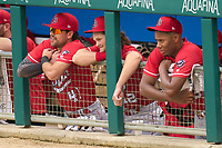 Louisville Bats Alex Blandino (41), Brantley Bell (12) and Hunter Greene (3) in the dugout during a game against the Indianapolis Indians on August 25, 2021 at Victory Field in Indianapolis, Indiana.  (Mike Janes/Four Seam Images)