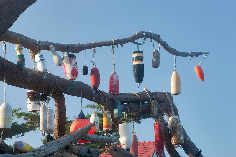Boat floats hanging on tree at Battery Point lighthouse. California