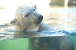 092220 San Diego Zoo