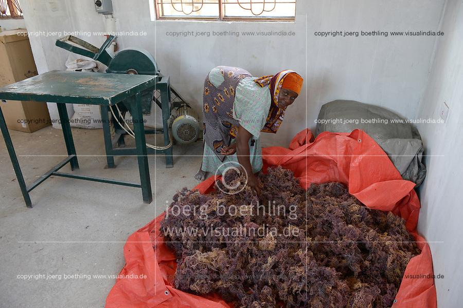 TANZANIA, Zanzibar, Paje,women cooperative process soap from seaweed as income generating project  / TANSANIA, Sansibar, Paje, Frauenkooperative stellt aus roten Seealgen Seife zur Einkommensförderung her