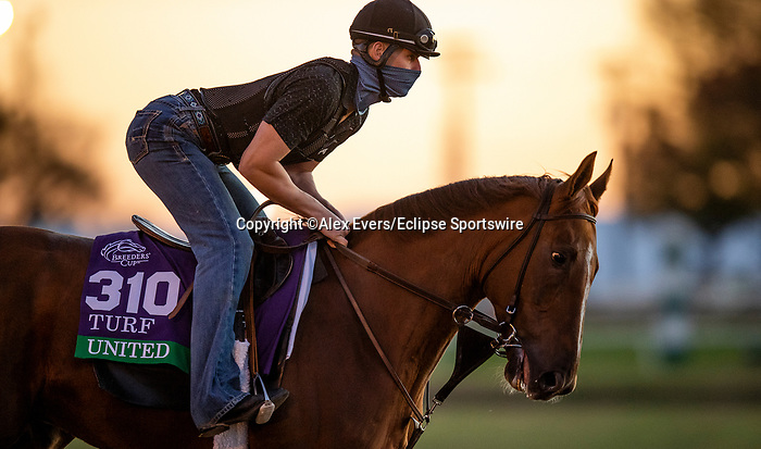 November 4, 2020: United, trained by trainer Richard E. Mandella, exercises in preparation for the Breeders' Cup Turf at Keeneland Racetrack in Lexington, Kentucky on November 4, 2020. Alex Evers/Eclipse Sportswire/Breeders Cup