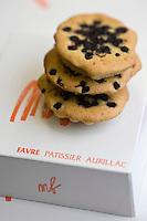 Europe/France/Auvergne/15/Cantal/ Aurillac:  Le Pèlerin, gâteau aux myrtilles de la Pâtisserie Laurent Favre, 11, rue des Carmes