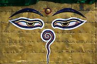 The Face of Buddha at Boudhanath, Nepal