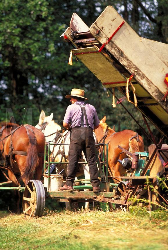 Amish man driving horse team with farm equipment. Amish man. Strasburg Pennsylvania USA Lancaster County.