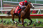 DEL MAR, CA  AUGUST 11: #1 Instagrand, ridden by Drayden Van Dyke, in the stretch of the Best Pal Stakes (Grade ll) on August 11, 2018, at Del Mar Thoroughbred Club in Del Mar, CA. (Photo by Casey Phillips/Eclipse Sportswire/Getty Images