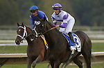 September 22, 2012. Handsome Mike (#3), ridden by Irad Ortiz Jr. and trained by Leandro Mora, wins the Gr. II Pennsylvania Derby at Parx Racing on in Bensalem, Pennsylvania. Alpha (left), Ramon Dominguez up, was favored to win but finished sixth. (Joan Fairman Kanes/Eclipse Sportswire)