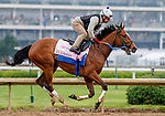 April 25, 2021: Clairiere, trained by trainer Steve Asmussen, exercises in preparation for the Kentucky Oaks at Churchill Downs on April 25, 2021 in Louisville, Kentucky. Scott Serio/Eclipse Sportswire/CSM