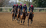November 5, 2020: Order Of Australia, Circus Maximus, Mogul, Lope Y Fernandez Magical, and Peaceful, trained by trainer Aidan P. O'Brien, exercises in preparation for the Breeders' Cup at Keeneland Racetrack in Lexington, Kentucky on November 5, 2020. Alex Evers/Eclipse Sportswire/Breeders Cup