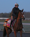 Nazuna, trained by trainer Roger Varian, exercises in preparation for the Breeders' Cup Juvenile Fillies Turf at Keeneland Racetrack in Lexington, Kentucky on November 2, 2020.