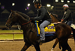 October 30, 2018 : Lone Sailor at Churchill Downs on October 30, 2018  in Louisville, Kentucky in preparation for the Breeders' Cup Classic. Mary M. Meek/ESW/CSM