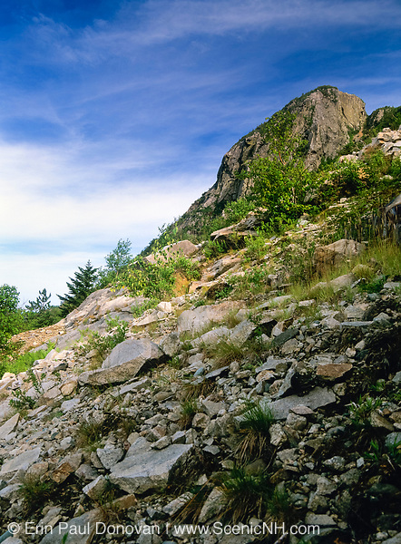 A section of Eagle Cliff in Franconia Notch in the New Hampshire White Mountains. Eagle Cliff was named in 1858 by the Reverend Thomas Hill after he found an eagle's nest high up on the cliff.