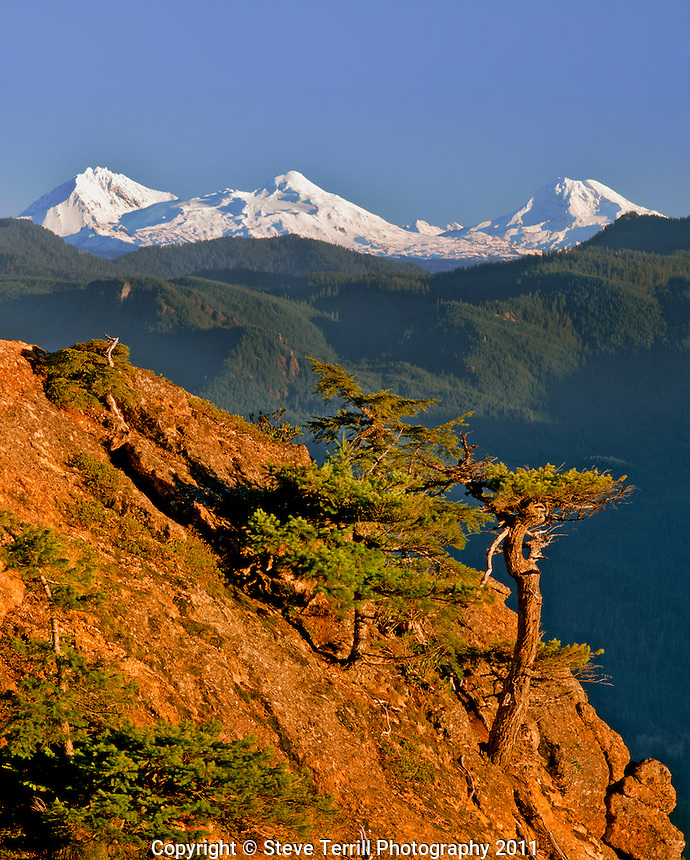 Three Sisters viewed from Panorama Point in Menagerie Wilderness, Oregon