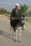 Local man on a donkey on the West Bank near Luxor.The town of Luxor occupies the eastern part of a great city of antiquity which the ancient Egytians called Waset and the Greeks named Thebes.