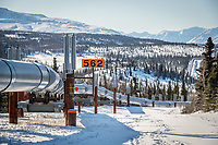 The Trans-Alaska Pipeline in the foothills of the Alaska Range north of Summit Lake.