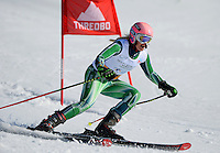2013 World Cup Skiing - GS