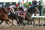 O'Prado Again with Kent Desormeaux up wins the Grade II Remsen Stakes for 2-year olds at 1 1/8 at Aqueduct Racetrack. Trainer Dale Romans. Owner Donegal Racing.