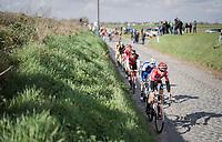 Jelle Wallays (BEL/Lotto-Soudal) ahead of the peloton on the cobbles of the Holleweg<br /> <br /> 72nd Dwars Door Vlaanderen (1.UWT)<br /> 1day race: Roeselare › Waregem BEL (203.4km)