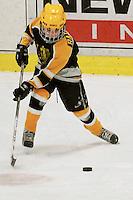 Badger State Winter Games '08 - Squirt Hockey - Appleton vs Wausau