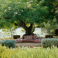 Cushions surround the base of an ancient tree in the centre of the garden creating a perfect spot to laze away the afternoon