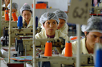 Workers at the Richall factory in Donguan, Guangdong province, China. The company makes plastic bags for several clients including Disney and Sainsbury's..