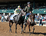 """LEXINGTON, KY - OCTOBER 12: #2 La Coronel and jockey Florent Geroux after winning the 26th running of the JPMorgan Chase Jessamine (Grade 3) $150,000 """"Win and You're In Juvenile Fillies Turf Division"""" for owner John Oxley and trainer Mark Casse at Keeneland Race Course.  October 12, 2016, Lexington, Kentucky. (Photo by Candice Chavez/Eclipse Sportswire/Getty Images)"""