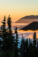"Sunrise over Morse Creek drainage, Olympic National Park, WA.  Summer.  The far mountain ridge on the right is the ""Deer Park/Blue Mountain area.""  Mount Baker is on the extreme left in the far distance across Puget Sound (covered by clouds).  Photo is taken from the Hurricane Ridge Road."
