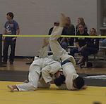2015 National Collegiate Judo Association Championships