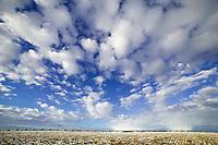 Trans Alaska Oil Pipeline, clouds over the coastal plains of Alaska's Arctic,