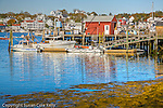 Fall foliage in Boothbay Harbor, ME