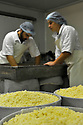 30/11/11 - VALUEJOLS - CANTAL - FRANCE - Fabrication de fromages AOP CANTAL par la Cooperative Fromagere de la Planeze - Photo Jerome CHABANNE