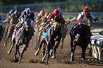 Trinniberg and Willie Martinez win the Breeders' Cup Sprint at Santa Anita Park in Arcadia, California on November 3, 2012.