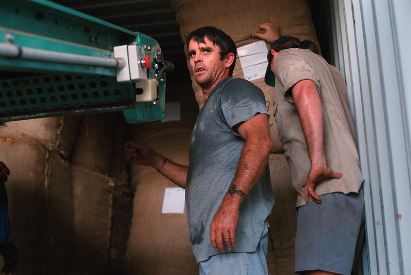 Loading the Bales 2, Mark Steele (l) and Peter Lane, Mareeba Sales Floor, Mareeba, 2003.