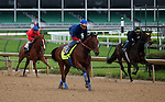 April 20, 2015 Kentucky Derby and Oaks contenders at Churchill Downs.  American Pharoah (center) galloped with exercise rider Georgie Alvarez at Churchill Downs. Owner Zayat Stables, trainer Bob Baffert.  Pioneerof The Nile x Littleprincessemma (Yankee Gentleman) While he was galloping, Judy the Beauty (chestnut on far left, rider in red) breezed in company with an unknown workmate (far right) with permission from Churchill Downs to breeze during the special Derby/Oaks work time. ©Mary M. Meek/ESW/CSM