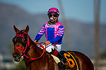 March 06, 2021: Alexis Centeno celebrates aboard Brickyard Ride after winning the San Carlos Stakes at Santa Anita Park in Arcadia, California on March 06, 2021. Evers/Eclipse Sportswire/CSM