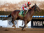 February 6, 2021: Risk Taking, ridden by Eric Cancel, wins the 2021 running of the G3 Withers S. at Aqueduct Racetrack in South Ozone Park, NY. Sophie Shore/ESW/CSM