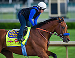 April 27, 2014: Hoppertunity, trained by Bob Baffert, exercises in preparation for the Kentucky Derby at Churchill Downs in Louisville, KY.  Scott Serio/ESW/CSM