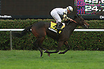 """Watsdachances (IRE), ridden by Cavier Castellano, win the """"Win & You're In"""" Miss Grillo Stakes (GIII) for 2-year old fillies, going 1 1/16 on the inner turf at Belmont Park, Elmont, New York.  Trainer Chad Brown.  Owner Michael Kisber and Bradley Thoroughbreds."""