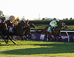 November 6, 2020: Aunt Pearl, ridden by Florent Geroux, wins the Juvenile Fillies Turf on Breeders' Cup Championship Friday at Keeneland on November 6, 2020: in Lexington, Kentucky. Bill Denver/Breeders' Cup/Eclipse Sportswire/CSM