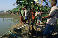 "S?dasien Asien Indien IND Sundarbans Wasserspeicher fuer Bewaesserung der Felder  -  Landwirtschaft Wasser xagndaz | .South Asia India Sundarbans , water pond for irrigation at farm -  agriculture water .| [ copyright (c) Joerg Boethling / agenda , Veroeffentlichung nur gegen Honorar und Belegexemplar an / publication only with royalties and copy to:  agenda PG   Rothestr. 66   Germany D-22765 Hamburg   ph. ++49 40 391 907 14   e-mail: boethling@agenda-fototext.de   www.agenda-fototext.de   Bank: Hamburger Sparkasse  BLZ 200 505 50  Kto. 1281 120 178   IBAN: DE96 2005 0550 1281 1201 78   BIC: ""HASPDEHH"" ,  WEITERE MOTIVE ZU DIESEM THEMA SIND VORHANDEN!! MORE PICTURES ON THIS SUBJECT AVAILABLE!! INDIA PHOTO ARCHIVE: http://www.visualindia.net ] [#0,26,121#]"