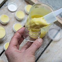 5. Schritt Lippen-und-Pfoten-Salbe selbermachen, selber machen, selber rühren: fertige Salbe wird in Salbendöschen gefüllt. Lippen-und-Pfoten-Balsam, Lippensalbe, Lippenbalsam, Pfotensalbe, Pfotenbalsam, Pfötchen-Salbe, Lippenpflege, Harzsalbe, Harzcreme, Harzbalsam, Pechsalbe, Fichtenharz wird zusammen mit Olivenöl, Honig und Bienenwachs zu einer Heilsalbe, Heilcreme, Creme, Salbe verarbeitet, Harzbalsam. Gewöhnliche Fichte, Rot-Fichte, Rotfichte, Picea abies, Common Spruce, Norway spruce, L'Épicéa, Épicéa commun