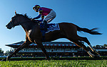 September 04, 2021: War Like Goddess #3, ridden by jockey Julien Leparoux win the Grade 1 Flower Bowl Stakes on the turf at Saratoga Race Course in Saratoga Springs, N.Y. on September 4th, 2021. Rob Simmons/Eclipse Sportswire/CSM
