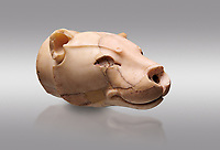 Fine Minoan translucent limestone lioness head shaped rhython from the  Knossos Palace Repositories 1600-1500 BC, Heraklion Archaeological  Museum, grey background.<br /> <br /> This exquitely worked lioness head rhython has a hole in the muzzle for pouring liquid offerings. The nose and eyes were originally inlaid
