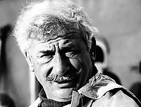 Додо Абашидзе