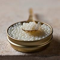 Gastronomie Générale:Caviar d'escargot - Stylisme : Valérie LHOMME